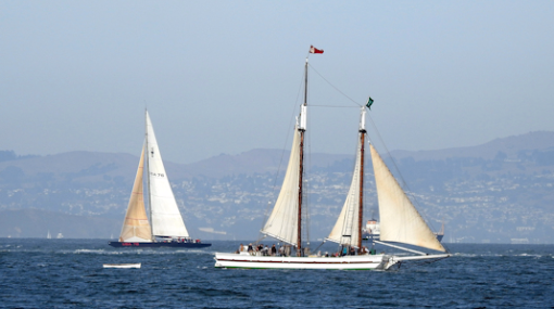 Leisure fun, adventure sailing on the historic wooden ship Alma on the Frisco Bay.